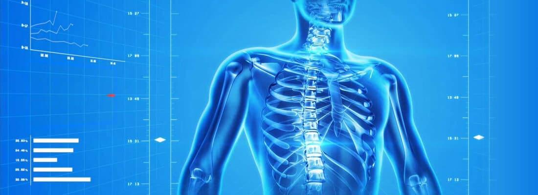 terapie effettuate nel Centro Trabucco Fisioterapia e Benessere